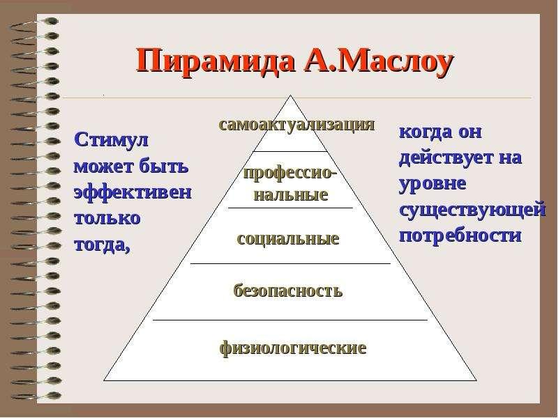 Деловая Пирамида Для Тигра. Как выстроить коллектив. Кому подчиняться, а кем командовать