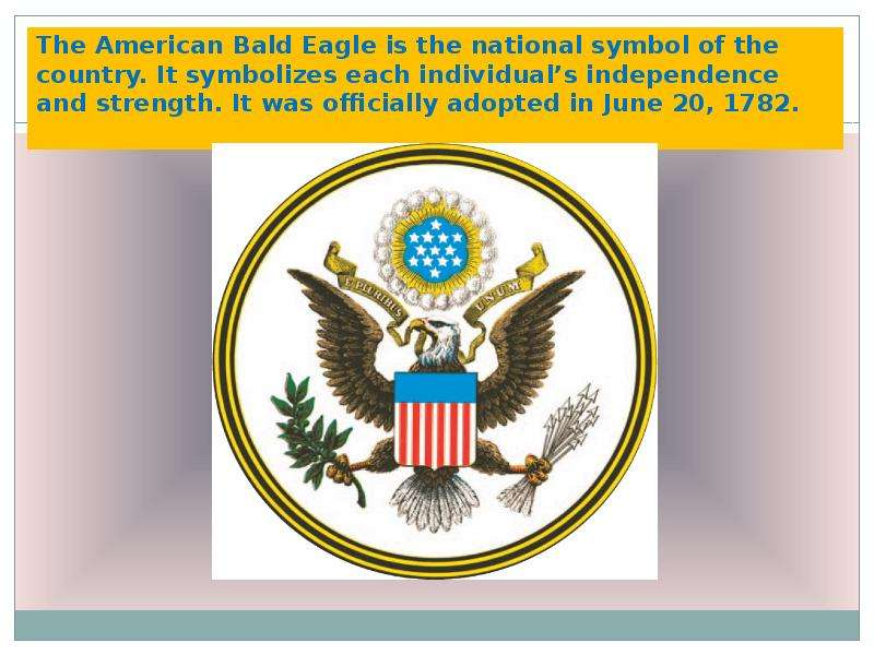The American Bald Eagle is the national symbol of the country. It symbolizes each individuals indepe