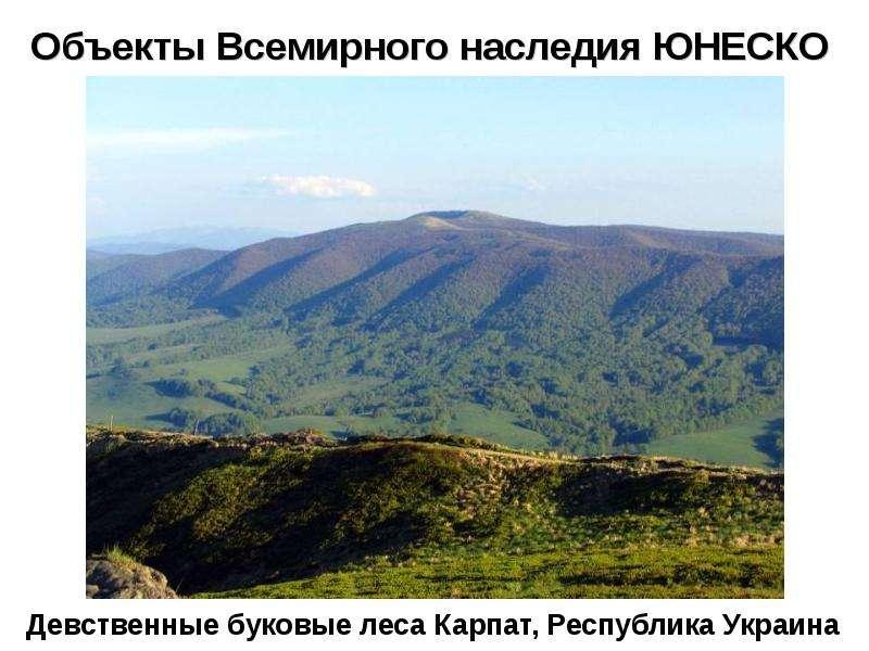 Объекты Всемирного наследия ЮНЕСКО Девственные буковые леса Карпат, Республика Украина
