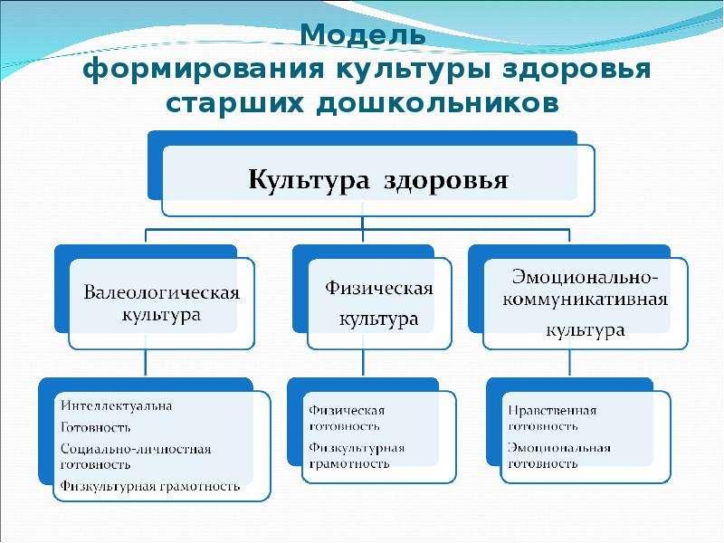 создание педагогических условий при формировании отношении к здоровью Россия, Краснодарский