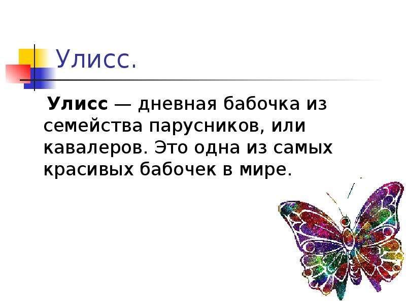 Улисс. Улисс — дневная бабочка из семейства парусников, или кавалеров. Это одна из самых красивых ба