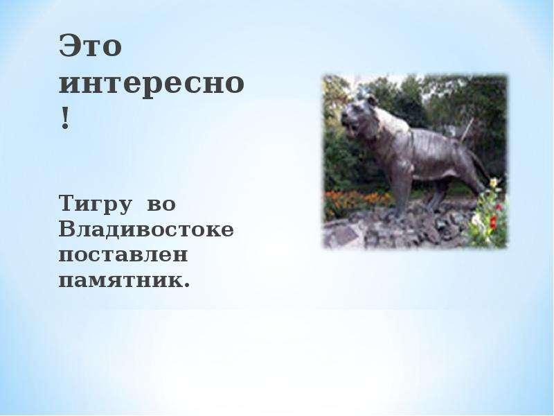 Это интересно! Это интересно! Тигру во Владивостоке поставлен памятник.