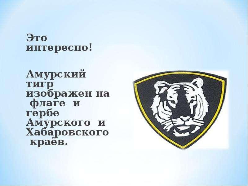 Это интересно! Это интересно! Амурский тигр изображен на флаге и гербе Амурского и Хабаровского краё