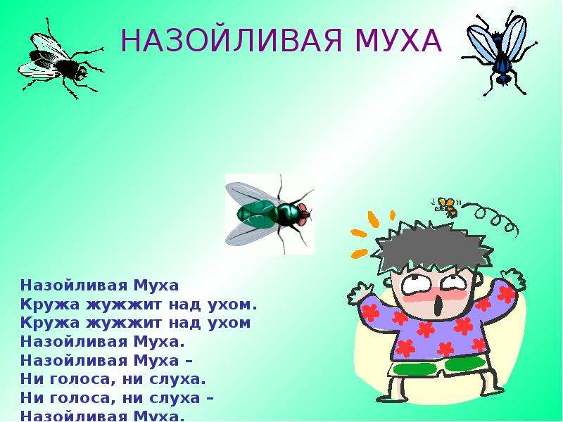 картинка назойливая муха