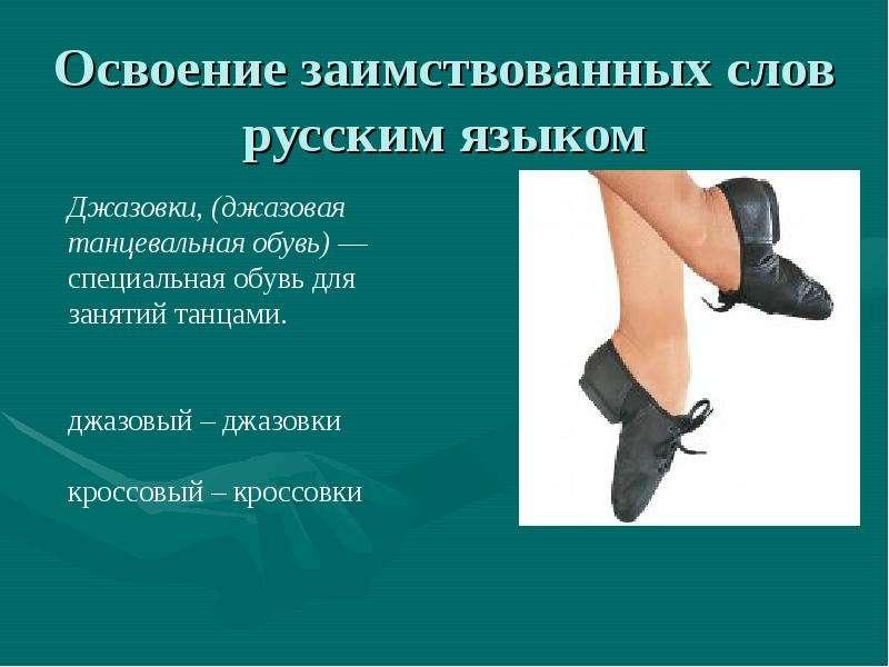 Освоение заимствованных слов русским языком