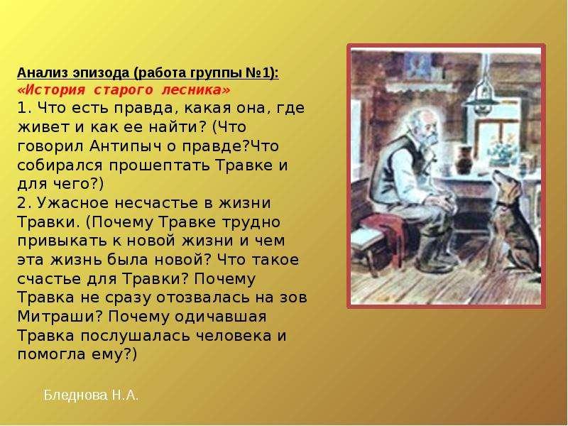 Анализ эпизода (работа группы №1): «История старого лесника» 1. Что есть правда, какая она, где живе