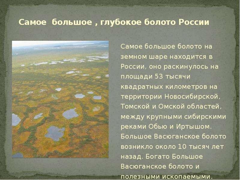 Где находится болото