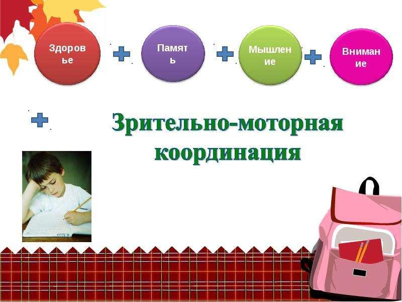 Портрет будущего первоклассника, слайд 14