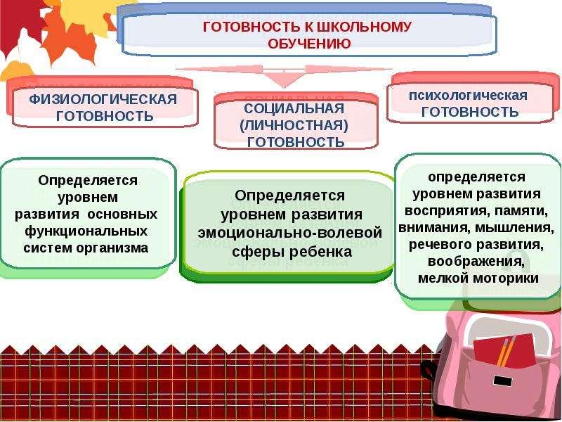 Портрет будущего первоклассника, слайд 3