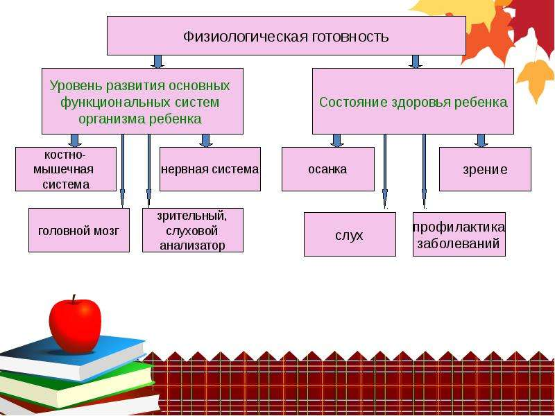 Портрет будущего первоклассника, слайд 5