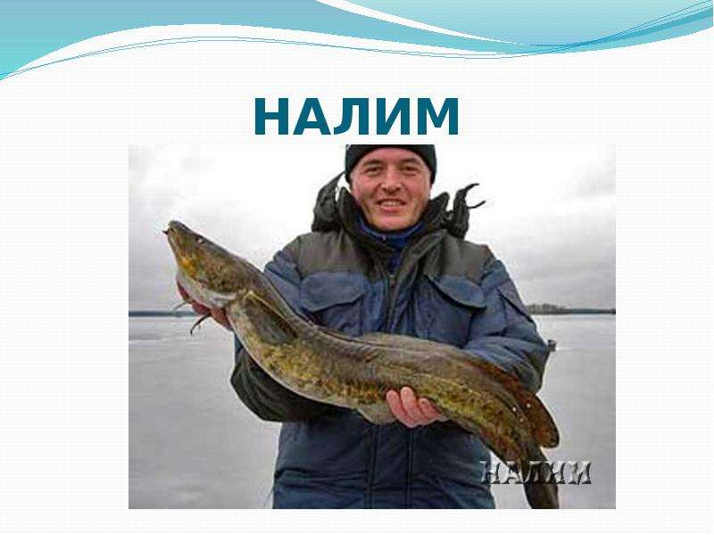 рыбалка нахлыстом мурманск