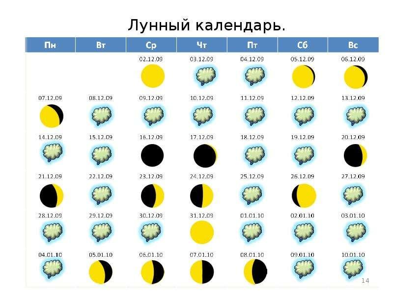 вас интересует мир космоса лунный календарь 2016 данном сегменте услуг