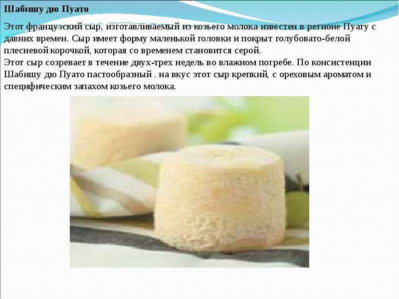 Рецепт изготовление козьего сыра в домашних условиях 614