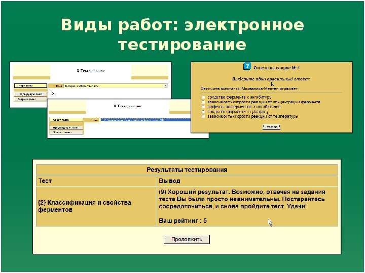 Виды работ: электронное тестирование