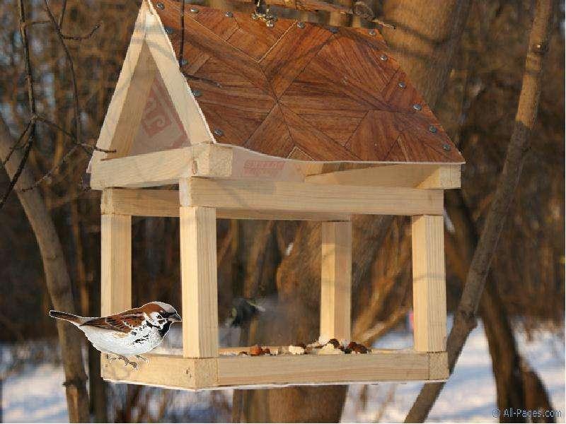 Как сделать детскую кормушку для птиц своими руками