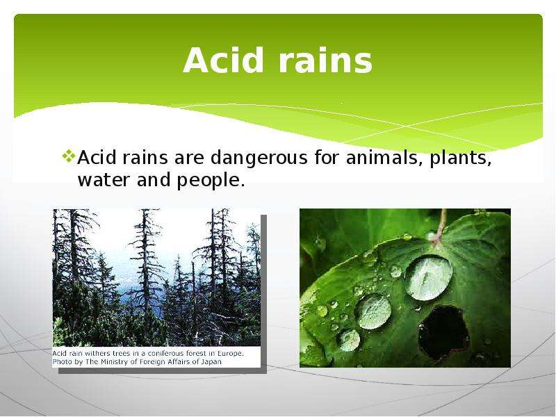 the real life dangers of an acid rain