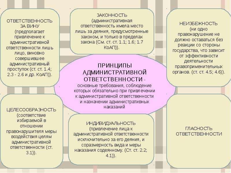 Понятие, особенности, двусубъектность административной ответственности, слайд 7