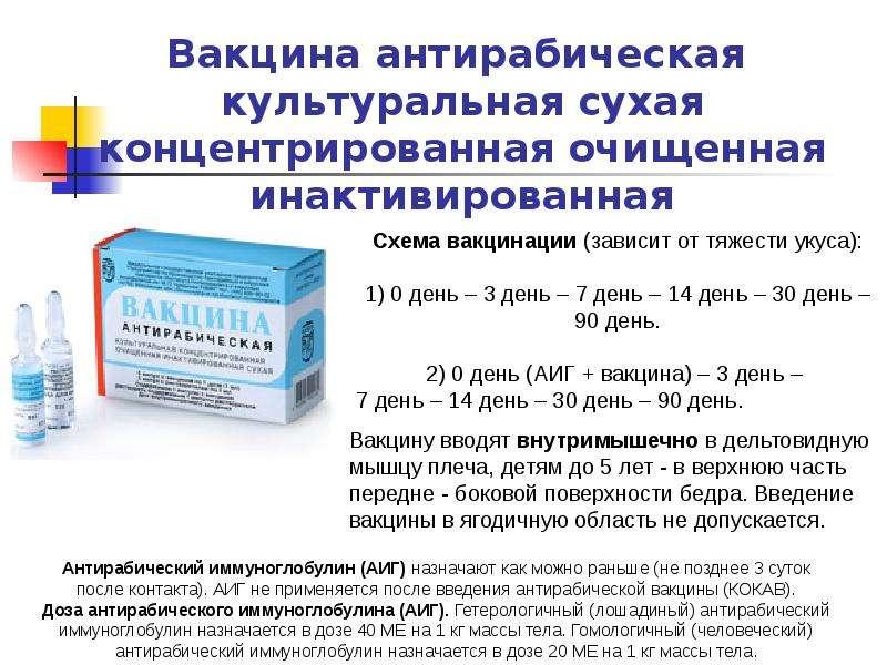 Вакцины и сыворотки .