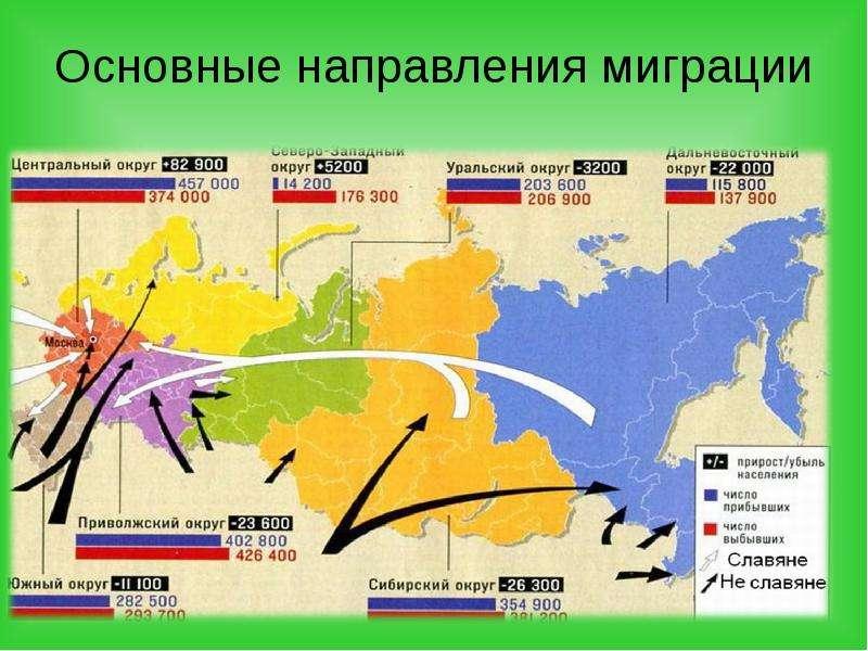 считанное регулирование миграции в россии история мышцы придут тонус