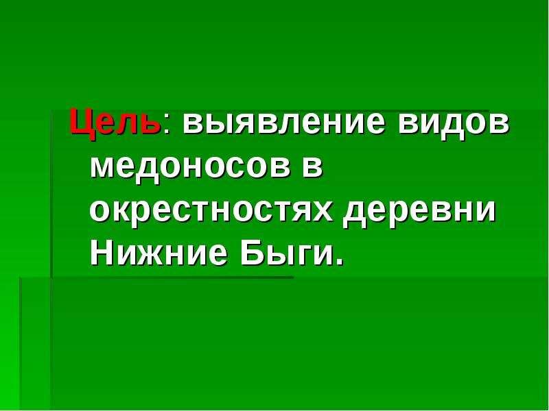 Цель: выявление видов медоносов в окрестностях деревни Нижние Быги. Цель: выявление видов медоносов
