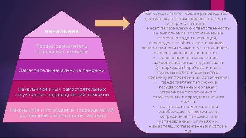 Должностная Инструкция Таможенного Декларанта