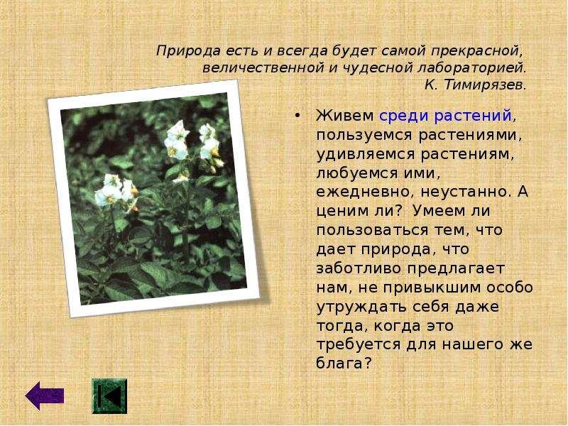 Природа есть и всегда будет самой прекрасной, величественной и чудесной лабораторией. К. Тимирязев.