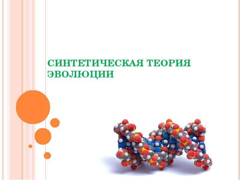 Презентация на тему синтетическая теория эволюции