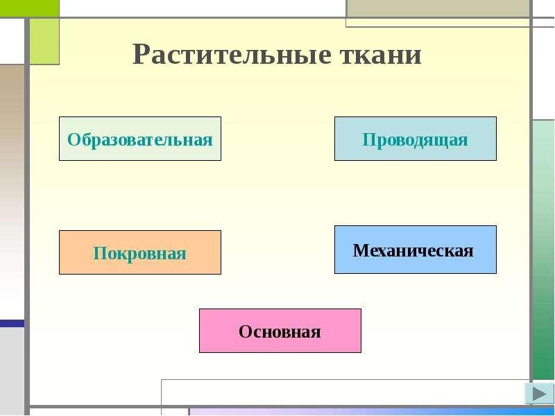 prezentatsiya-pro-tkani-po-biologii-6-klass