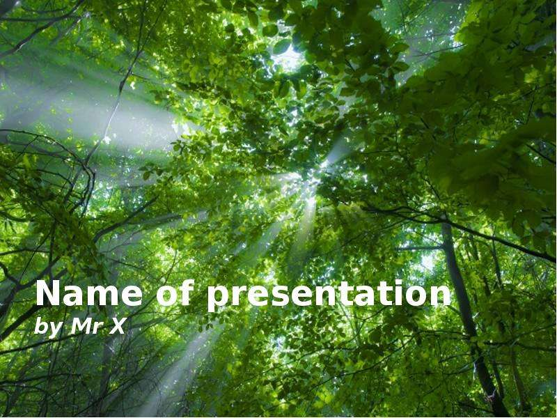 Шаблоны для презентации лес скачать бесплатно