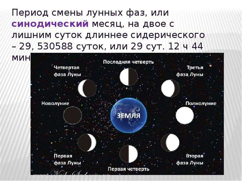 члены в какой фазе находиться луна сегодня слизывают