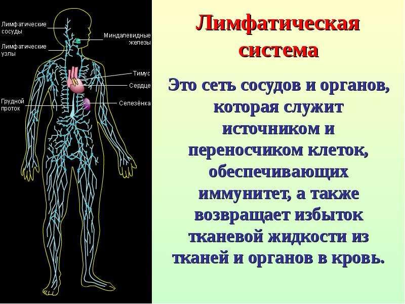 Грядущая революция здоровья