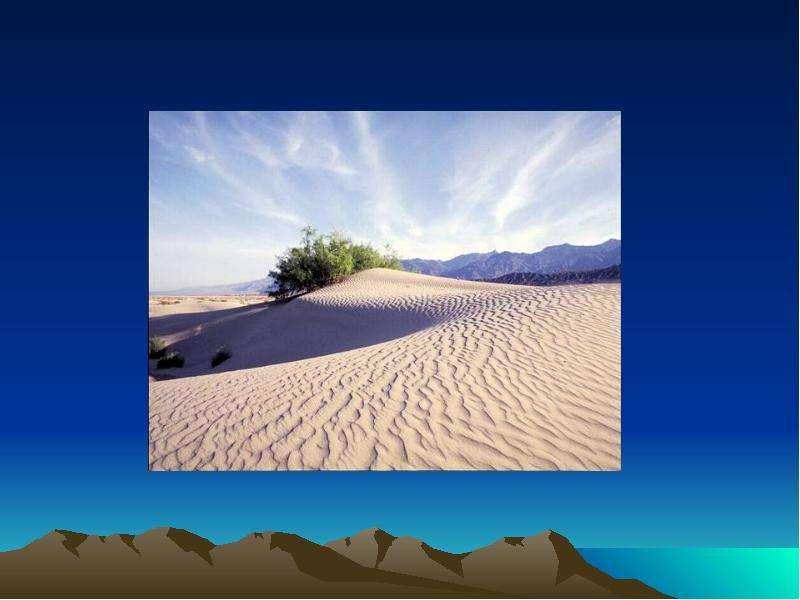 На тему Животные пустыни., слайд 10