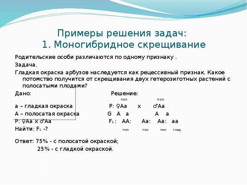 Примеры генетических задачи по биологии их решение i помощь на экзамене биология