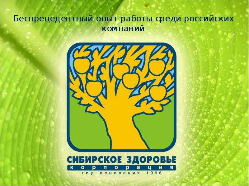 Презентация Беспрецедентный опыт работы среди российских компаний