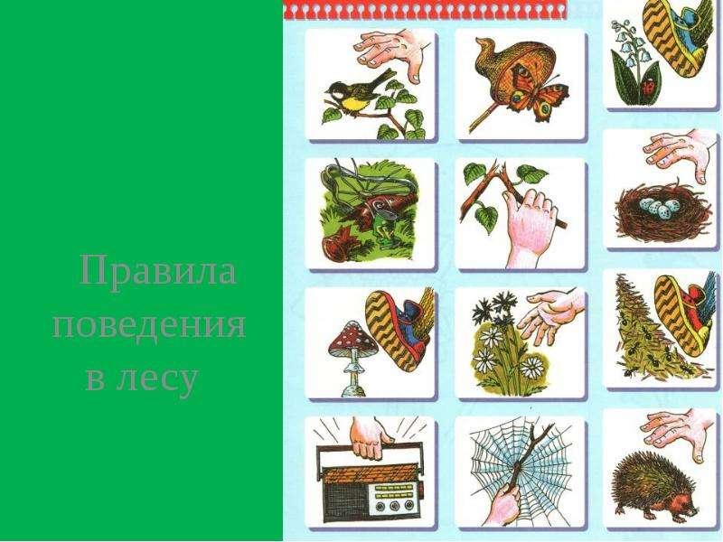 Рисунки символами о природе