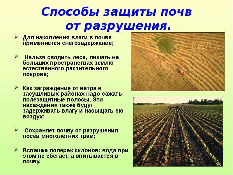 какие меры по охране почвы применяются