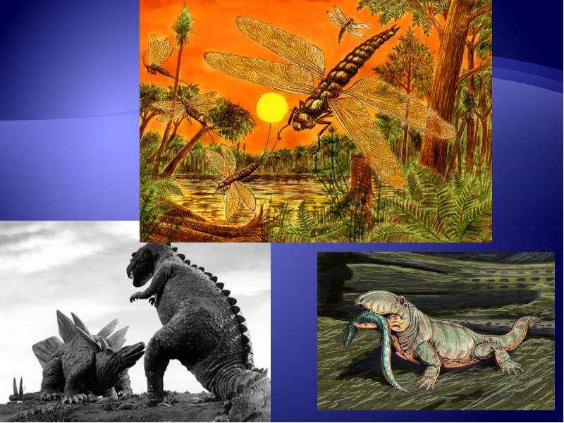 Развитие жизни на Земле: палеозой, слайд 18