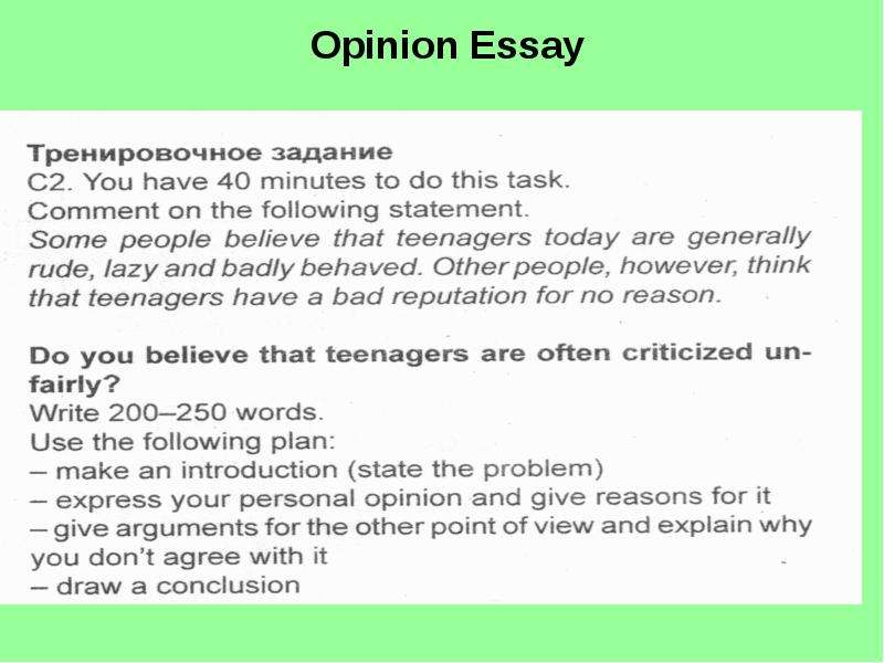 personal opinion research paper