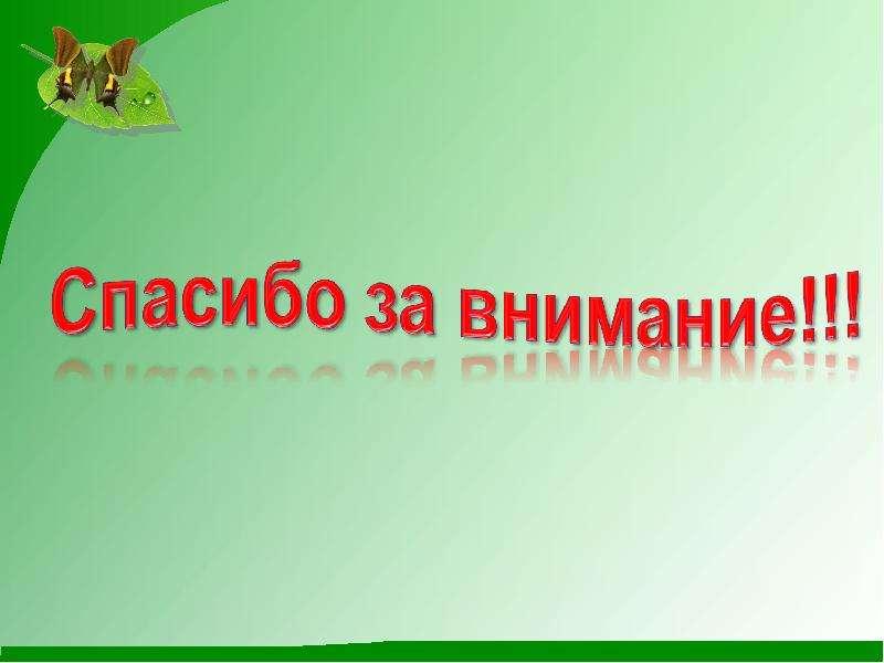 Использование ситуаций успеха в современной школе на уроках русского языка, рис. 15