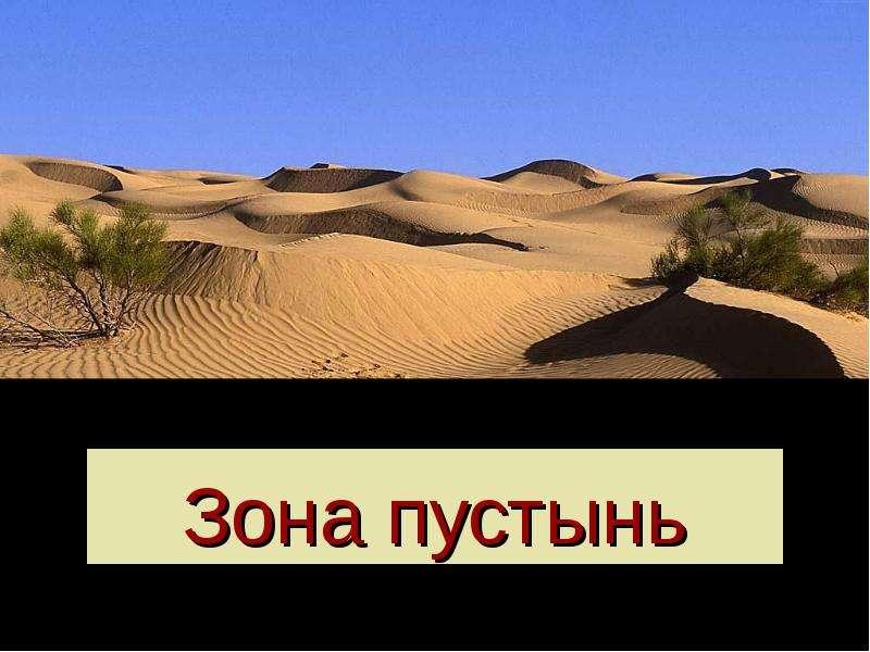 Презентация Зона пустынь