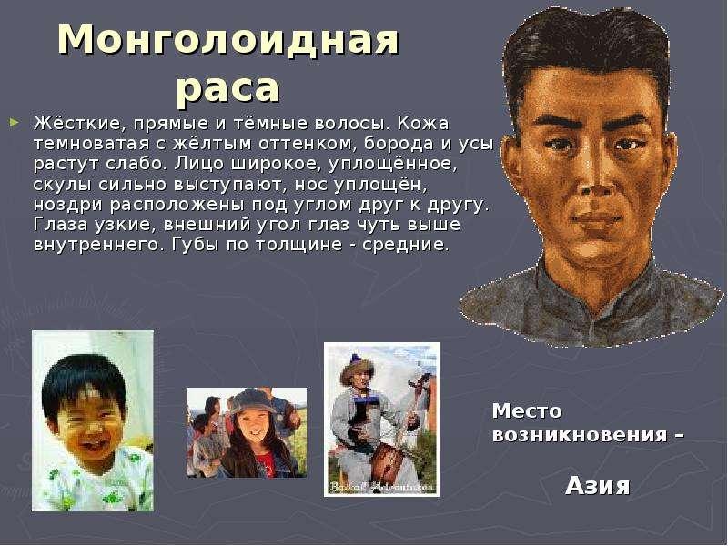 Монголоидная раса Жёсткие, прямые и тёмные волосы. Кожа темноватая с жёлтым оттенком, борода и усы р