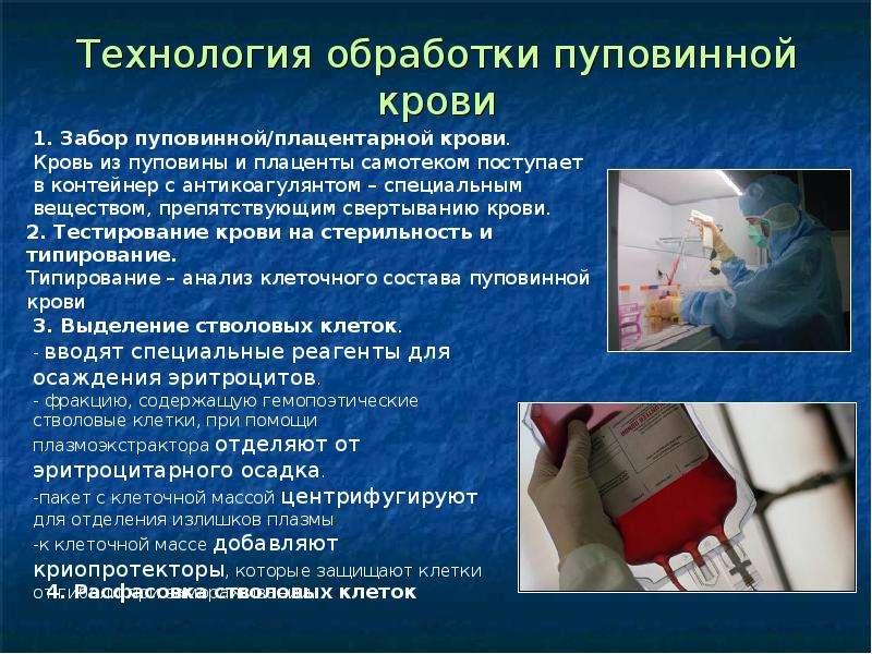 Технология обработки пуповинной крови