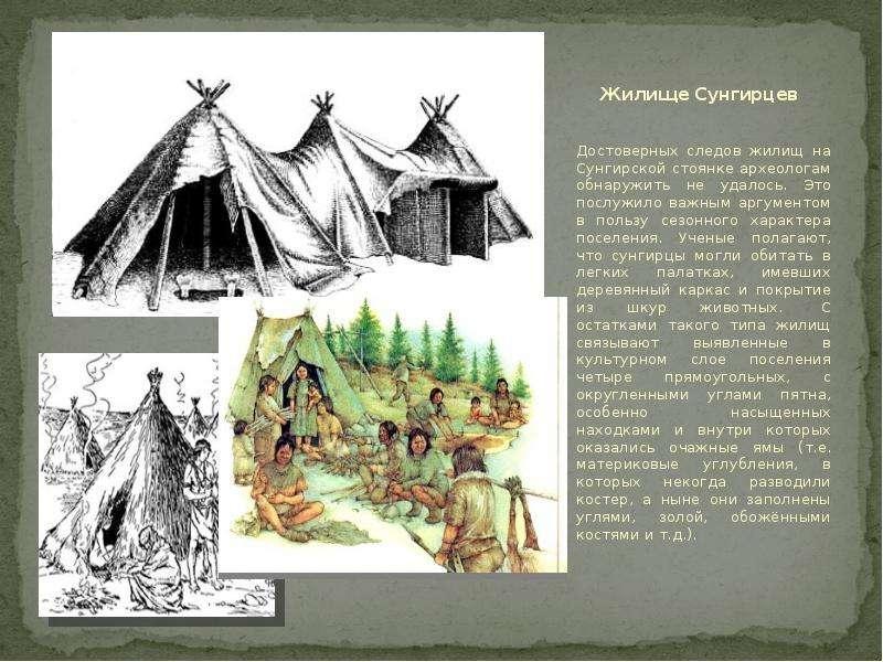 Жилище Сунгирцев Достоверных следов жилищ на Сунгирской стоянке археологам обнаружить не удалось. Эт