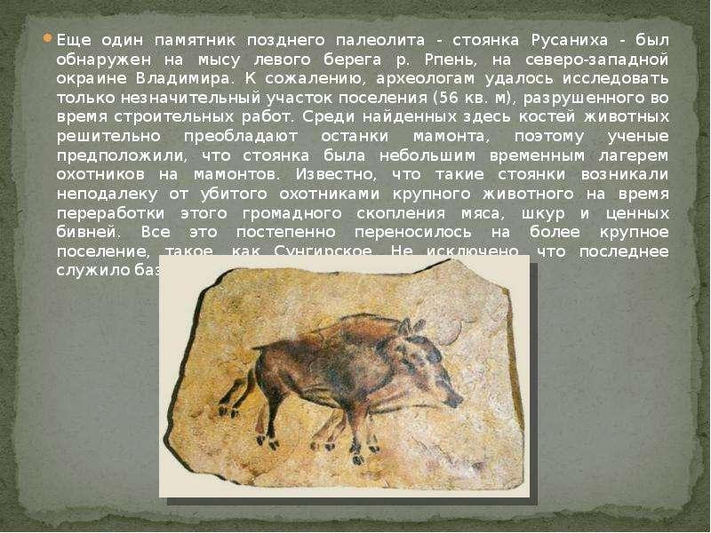 Еще один памятник позднего палеолита - стоянка Русаниха - был обнаружен на мысу левого берега р. Рпе