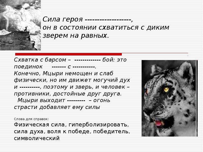 Символ «Огонь» в романтической поэме М. Ю. Лермонтова «Мцыри», рис. 9