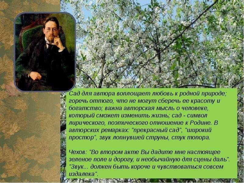 Замысел вишневого сада возник у чехова весной 1901 года (первые заметки в