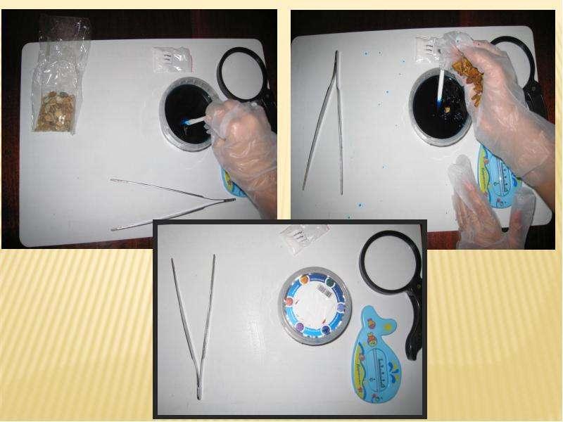 Выращивание кристаллов неорганических веществ, слайд 14