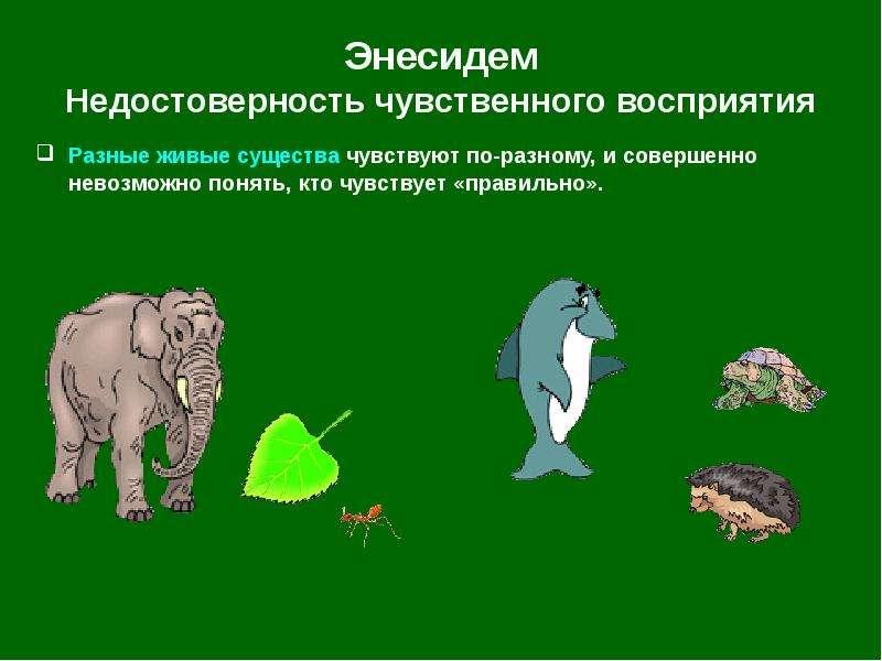 Энесидем Недостоверность чувственного восприятия Разные живые существа чувствуют по-разному, и совер