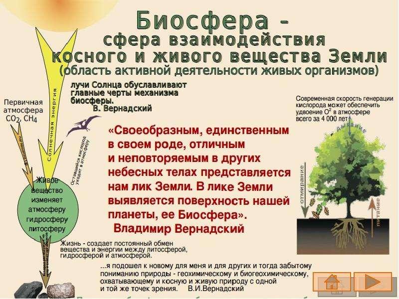 Владимир Вернадский, слайд 6