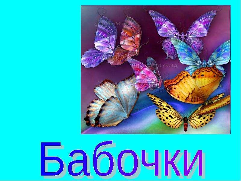 свидания презентация на тему бабочки страницу